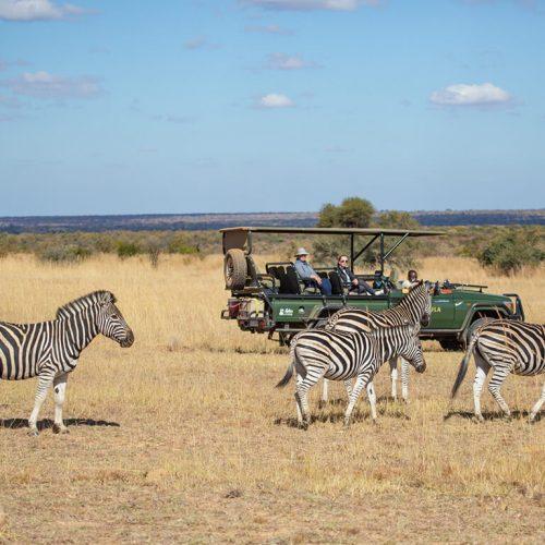 2019-mabula-safaris-10